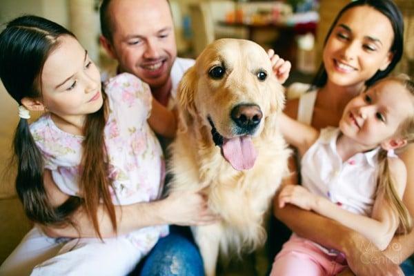 Pet-Care-Job-Opportunities-in-Boston-11-e1432671367900 (1)
