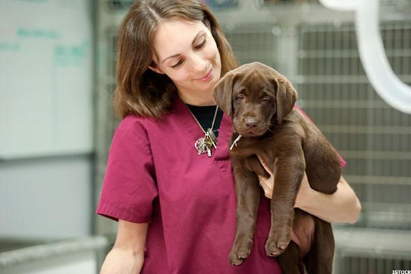 animal-care-worker_600x400