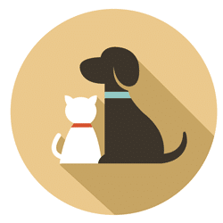 mobile-grooming-icon