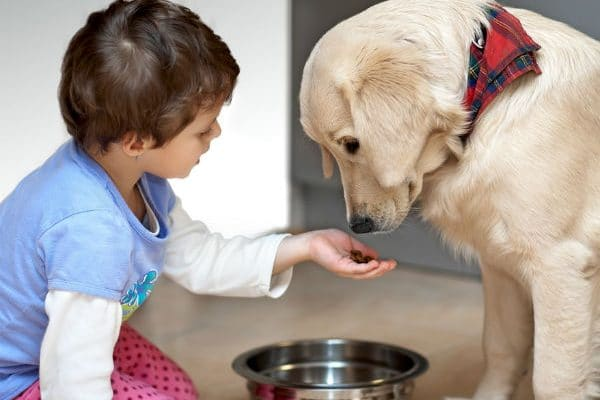 pets-and-kids3-08-1454940080-600x400